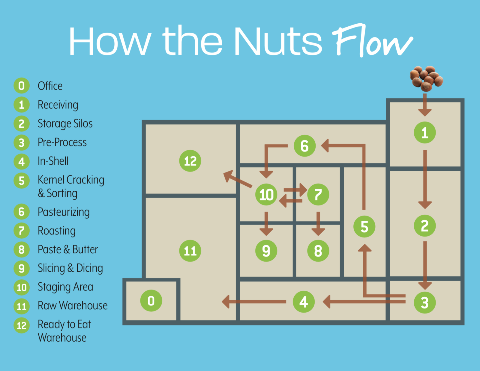Detailed diagram of nut flow in processing facility