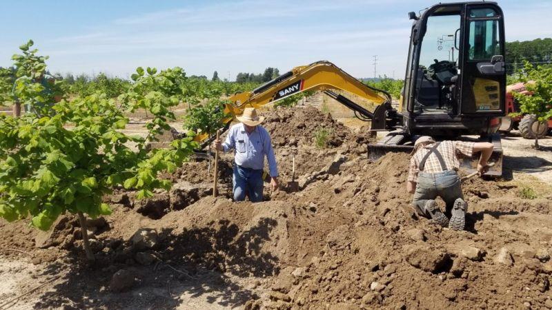 Joe and Nathaniel Edmonds installing irrigation